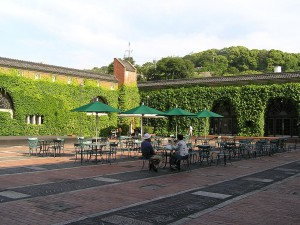 1280px-Courtyard_at_ivy_square[1]